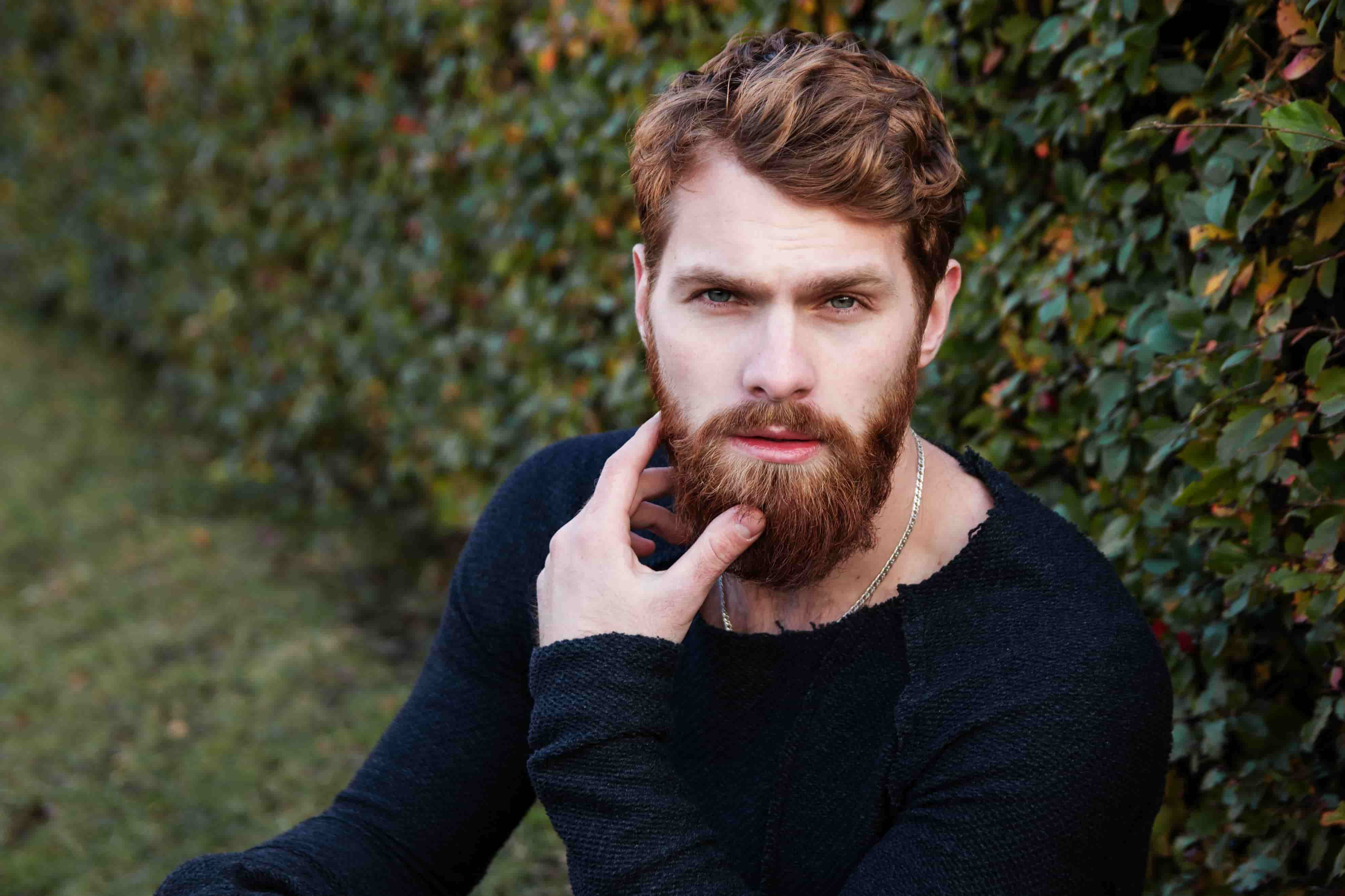adult-beard-bushes-247917-min